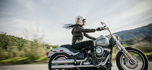 Harley Rental Offer